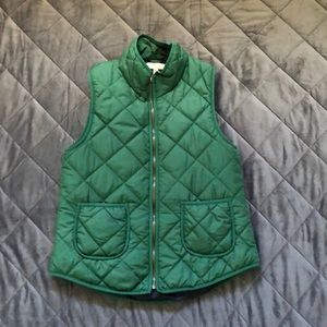 Green vest with blue lining